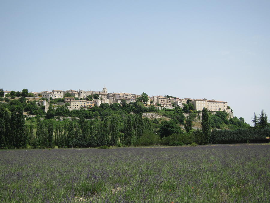 Village Beyond The Lavender Field Photograph