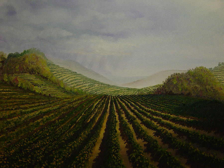 Vineyard Painting  - Vineyard Fine Art Print