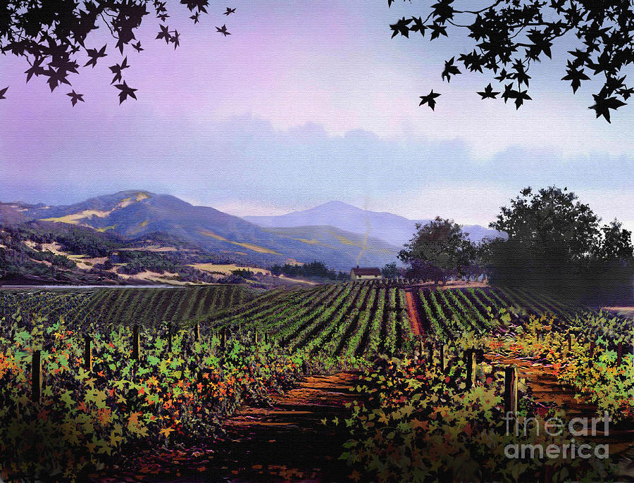 Vineyard Napa Sonoma Painting  - Vineyard Napa Sonoma Fine Art Print
