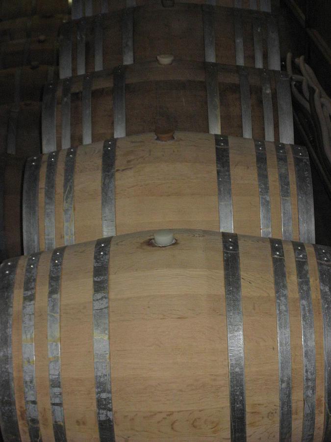 Vineyards In Va - 121218 Photograph