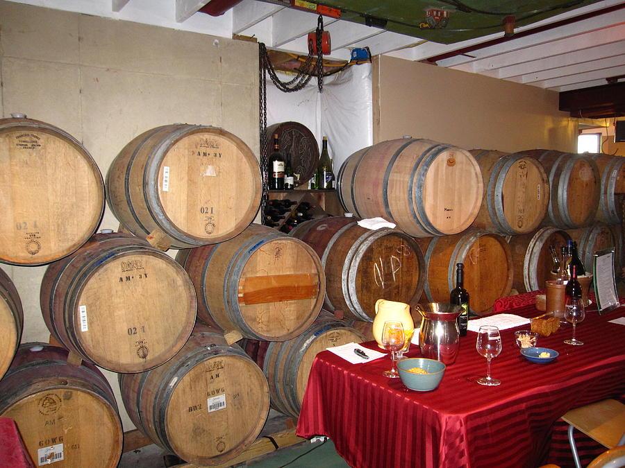 Vineyards In Va - 121226 Photograph