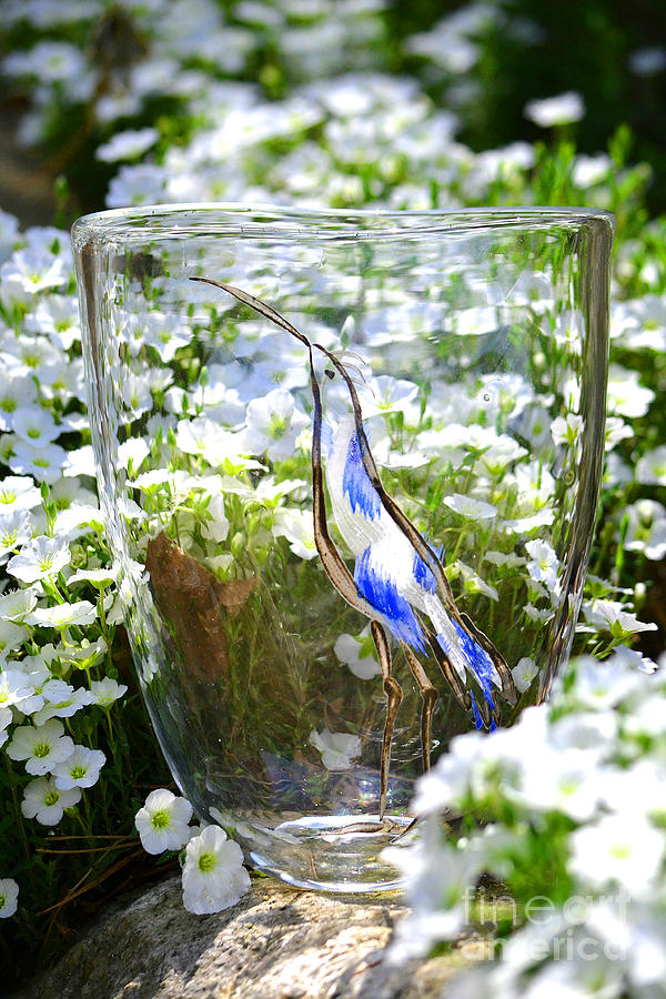 Owl Glass Art - Vinsanchi Glass Art-3 by Vin Kitayama