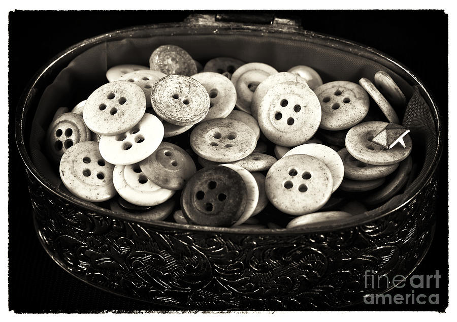 Vintage Button Treasure Photograph