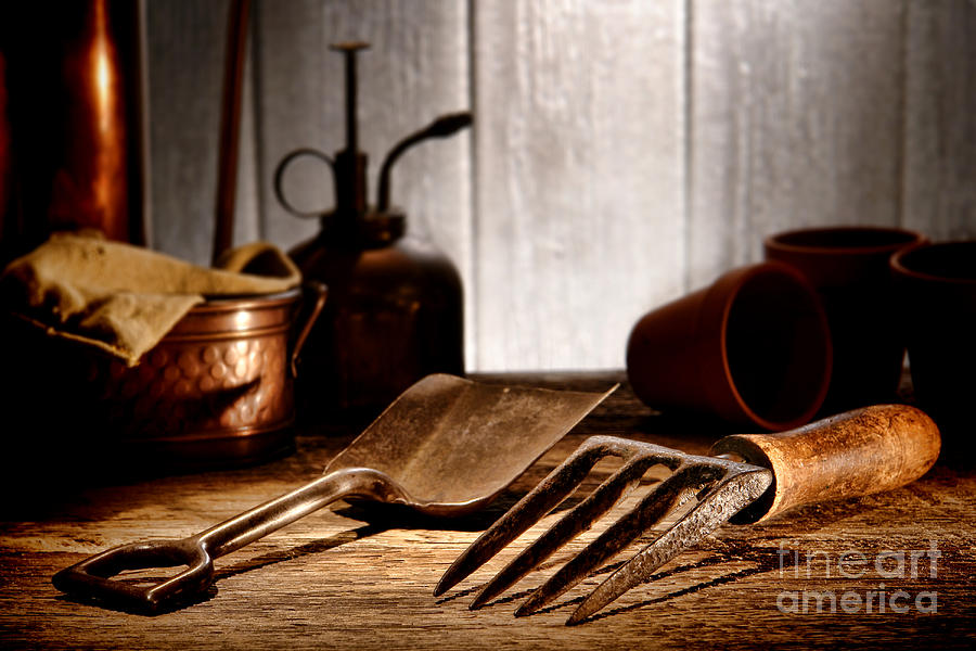 Vintage Gardening Tools Photograph