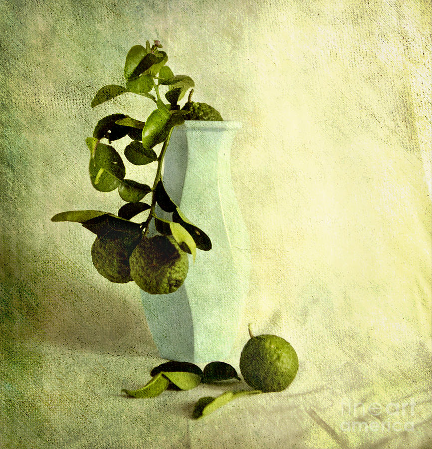 Vase Photograph - Vintage Limes by Linde Townsend