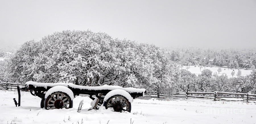 Vintage Wagon In Snow And Fog Filled Valley Photograph