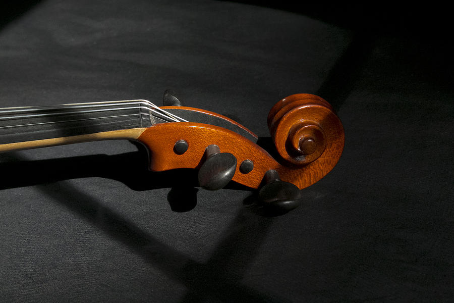Violin Photograph - Violin In Shadow by Mark McKinney