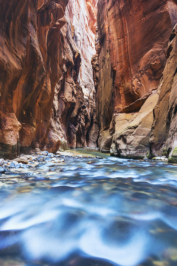 Virgin River In Canyon Narrows Photograph