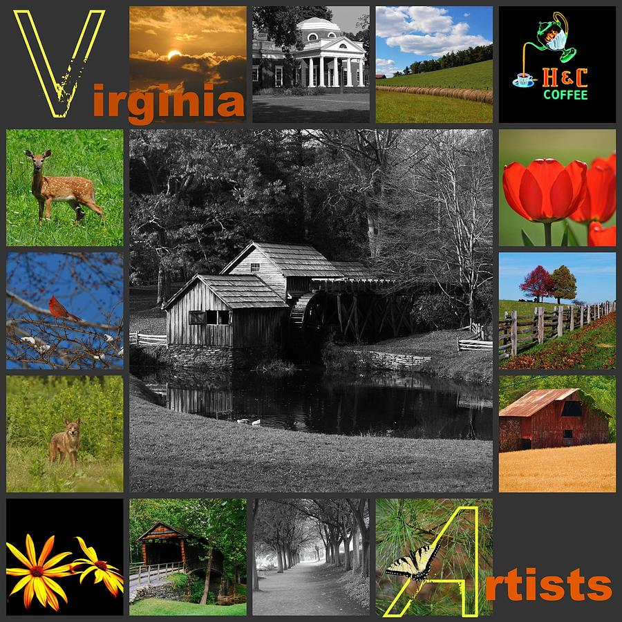 Virginia Artist Logo Entry Mixed Media  - Virginia Artist Logo Entry Fine Art Print