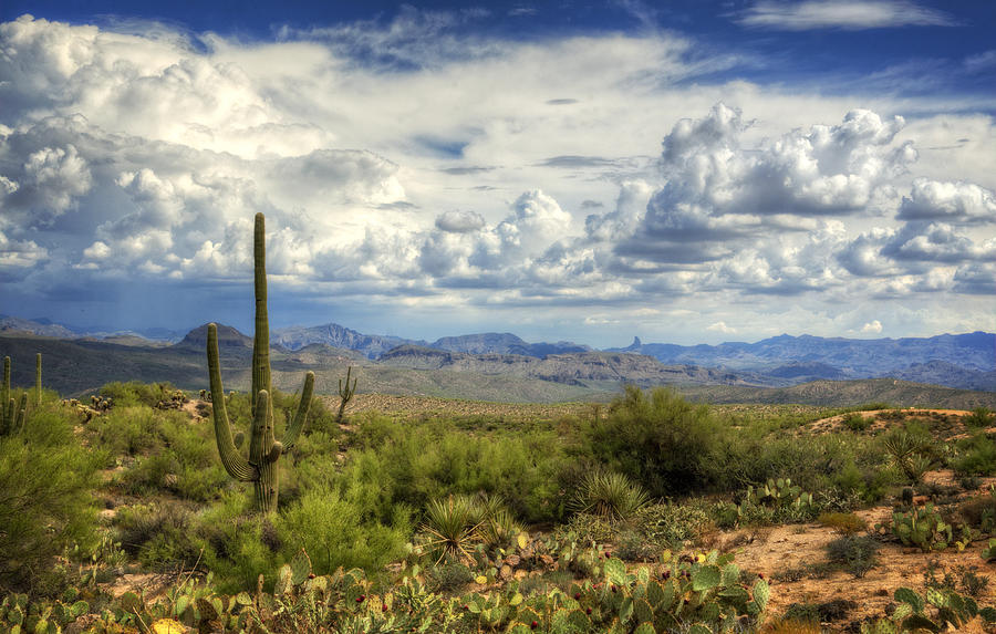 Visions Of Arizona  Photograph  - Visions Of Arizona  Fine Art Print
