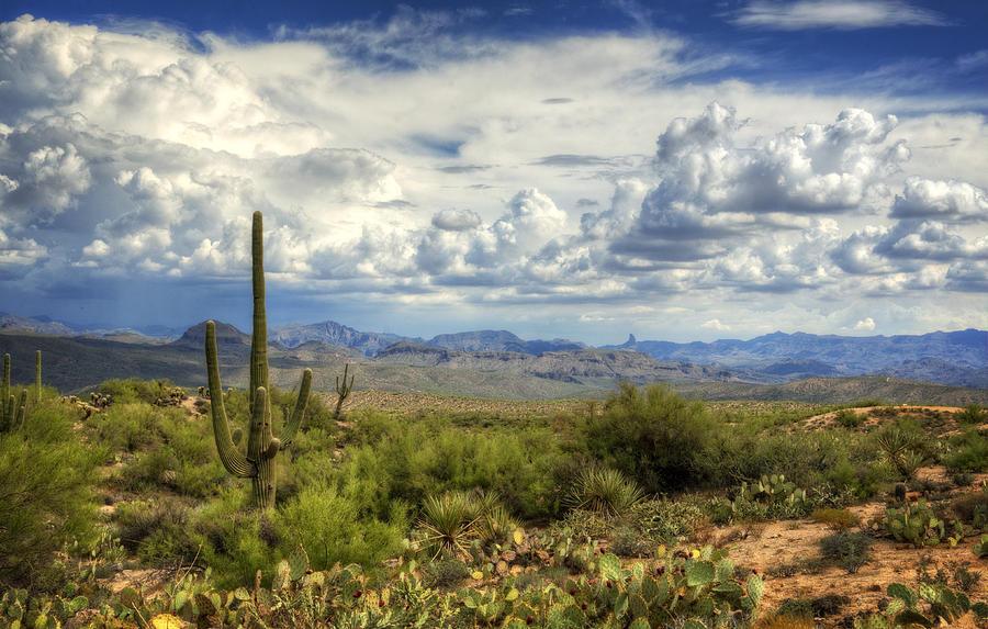 Visions Of Arizona  Photograph