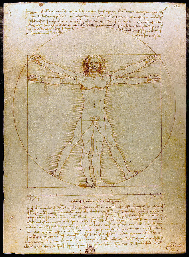 Vitruvian Man By Leonardo Da Vinci  Drawing