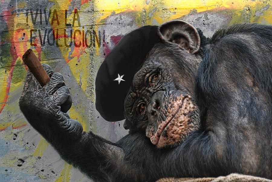 Animal Photograph - Viva La Evolucion by Joachim G Pinkawa