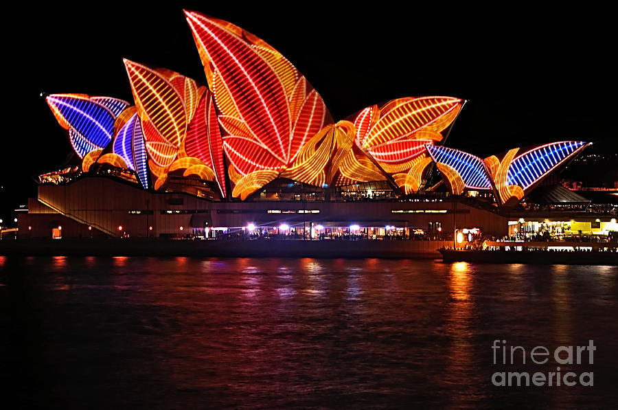 Vivid Sydney By Kaye Menner - Opera House ... Leaves Photograph