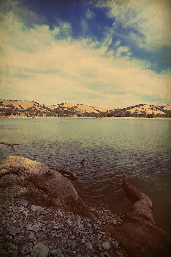 Lake Del Valle Photograph - Wading Into The Cold Water by Laurie Search