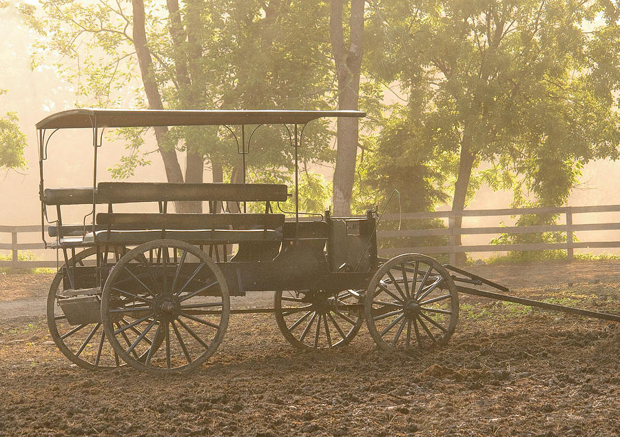 Savad Photograph - Wagon - Abes Buggie by Mike Savad