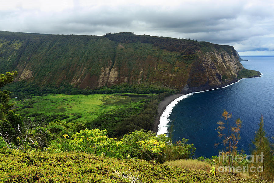 Waipio Valley Photograph