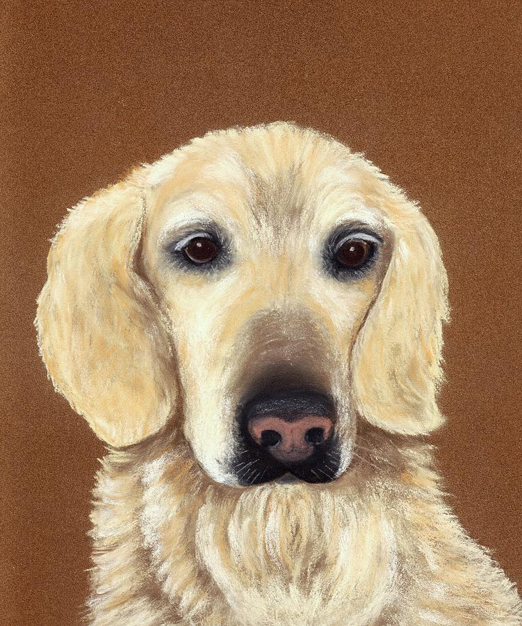 Dog Painting - Waiting by Anastasiya Malakhova
