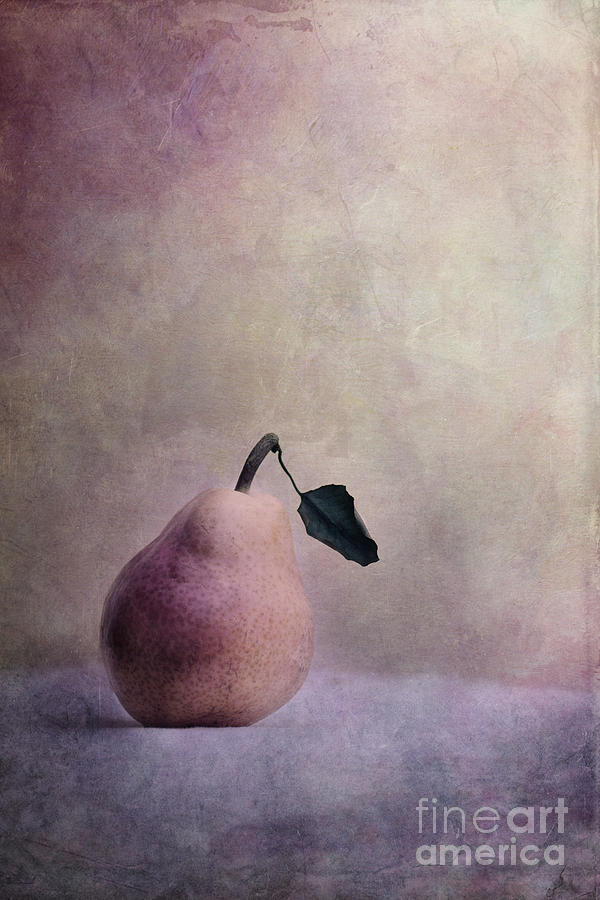 Pastel Photograph - Waiting For Company by Priska Wettstein