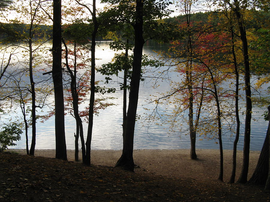 Walden Pond In Autumn Photograph  - Walden Pond In Autumn Fine Art Print