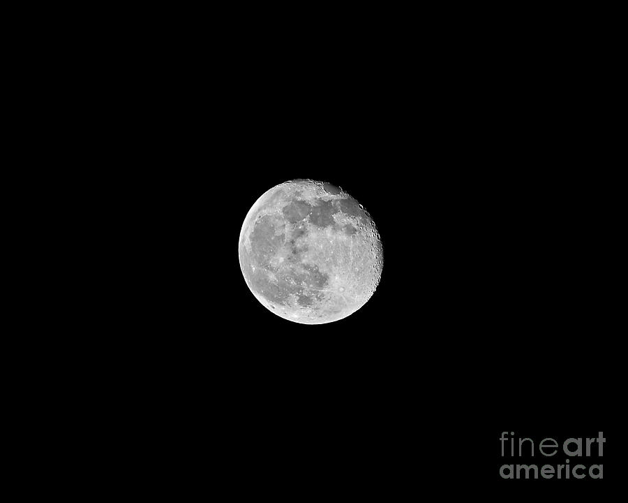 Moon Photograph - Waning Flower Moon by Al Powell Photography USA