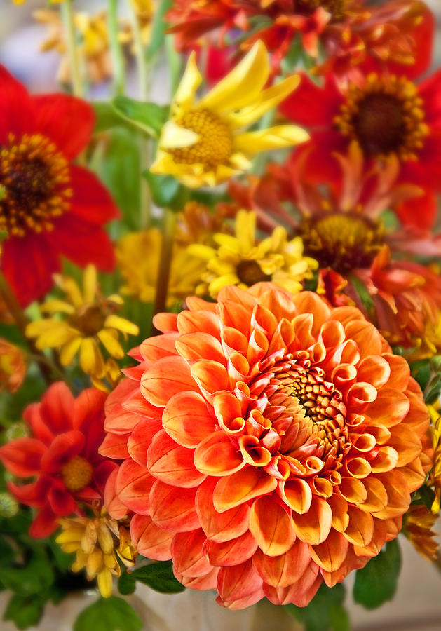 Warm Colored Flower Bouquet With Round Dahlia Photograph  - Warm Colored Flower Bouquet With Round Dahlia Fine Art Print