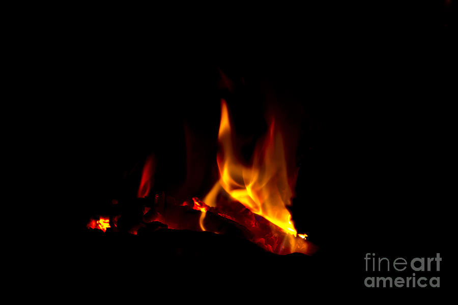 Warmth Photograph  - Warmth Fine Art Print