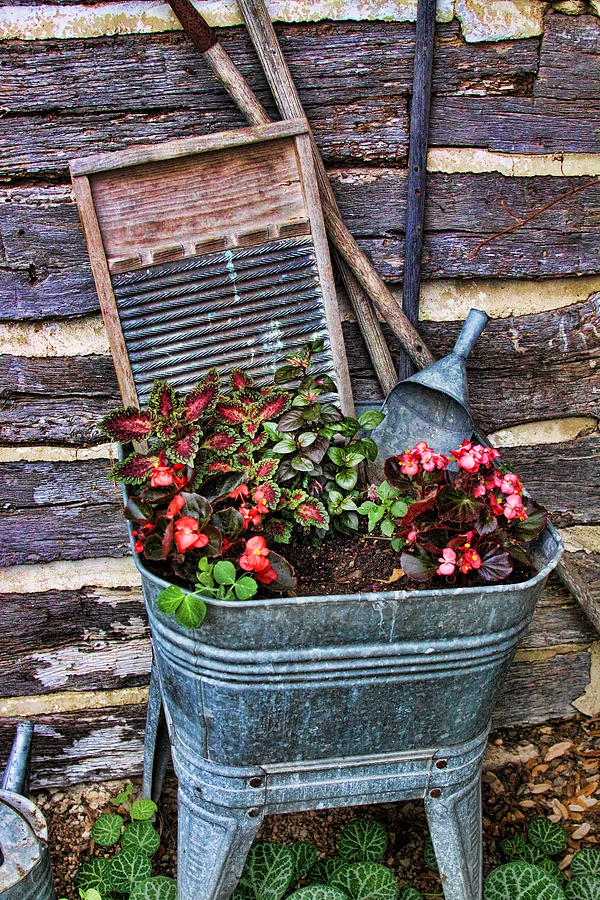 Wash Tub Planter Photograph  - Wash Tub Planter Fine Art Print