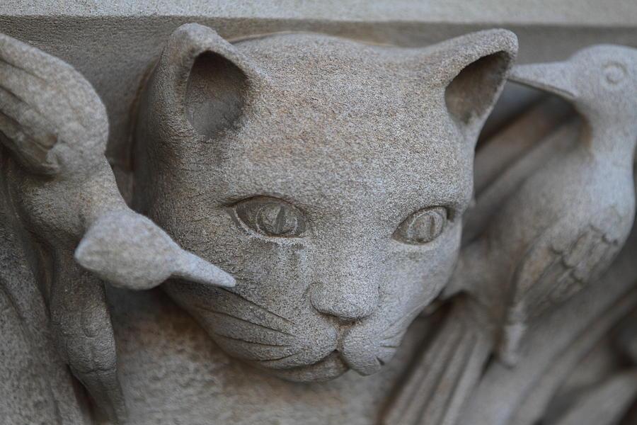 Washington National Cathedral - Washington Dc - 01139 Photograph