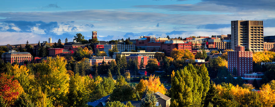 Washington State University In Autumn Photograph  - Washington State University In Autumn Fine Art Print