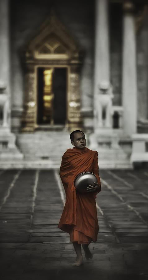 Wat Bencha Monk Photograph