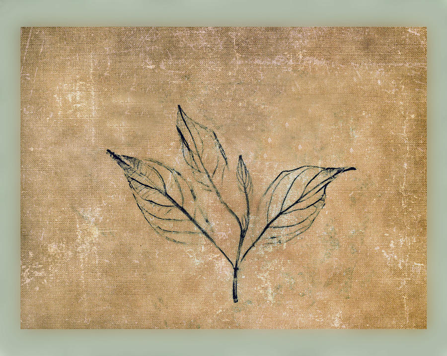 Watch A Leaf Mixed Media  - Watch A Leaf Fine Art Print