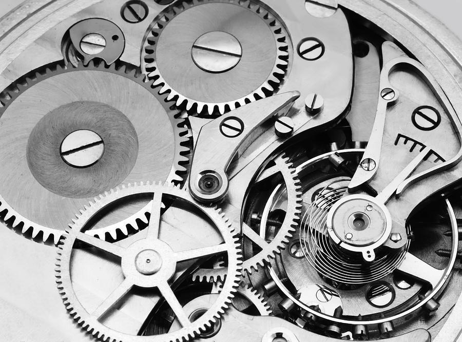 Watch Mechanism Photograph