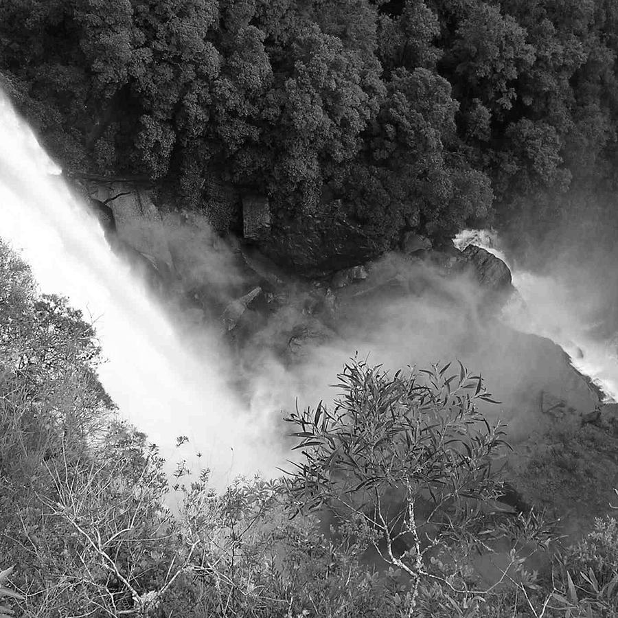 Water Fall And Bushland Photograph