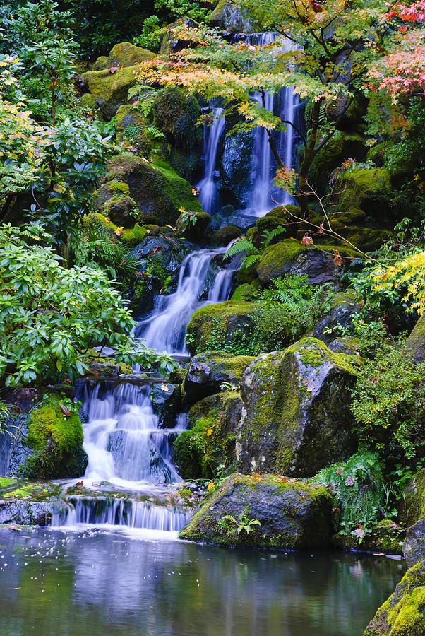 Water Fall Photograph