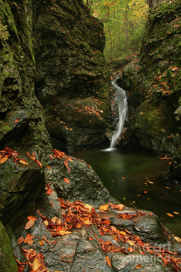 Water Falls As Autumn Starts Photograph  - Water Falls As Autumn Starts Fine Art Print