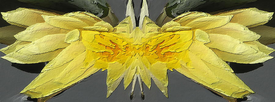 Water Lily Unleashed 4 Digital Art