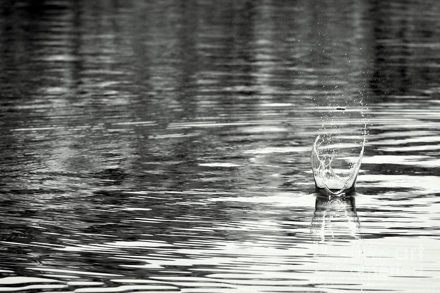 Water Photograph - Water by Prajakta P