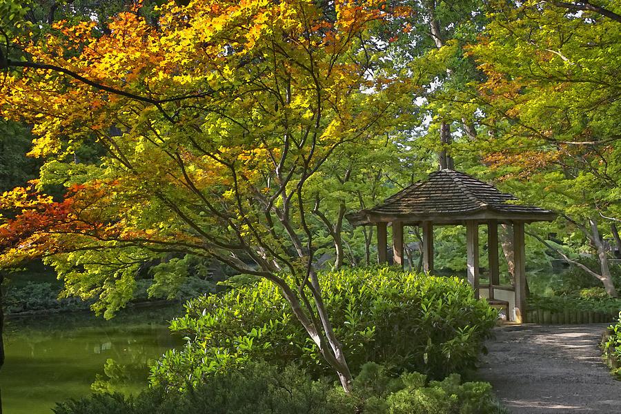Botanical Photograph - Watercolor Gardens by Joan Carroll