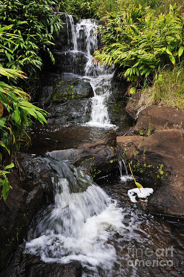 Waterfall And Stream Photograph