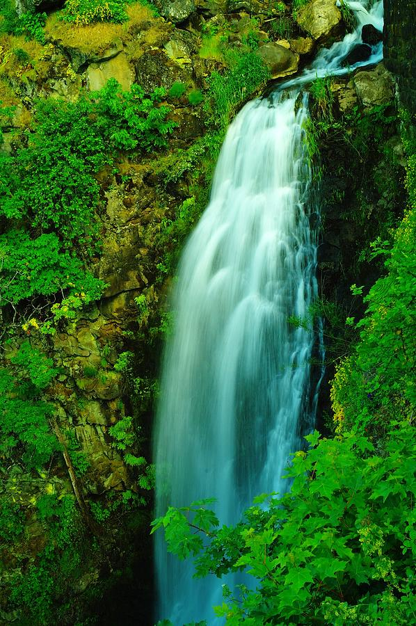 Waterfall In Hood River Oregon Photograph  - Waterfall In Hood River Oregon Fine Art Print
