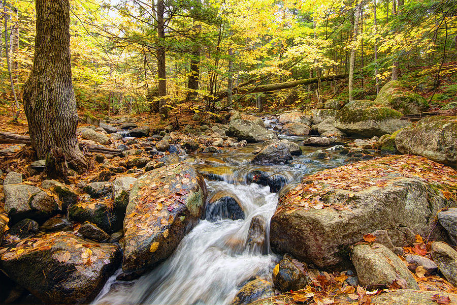 Waterfall In The Fall Nh Photograph