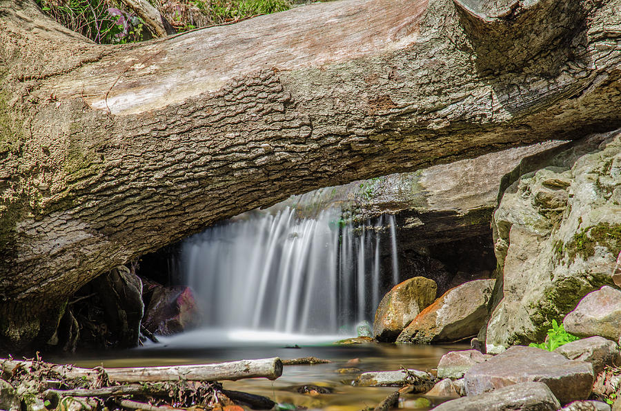 Waterfall Canvas Prints Photograph - Waterfall Under Fallen Log by Jonah  Anderson