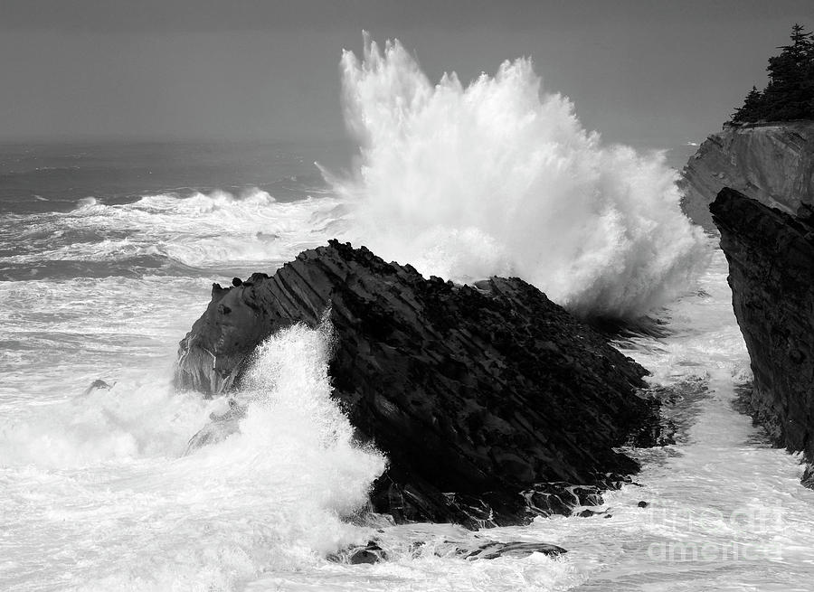 Wave At Shore Acres Bw Photograph  - Wave At Shore Acres Bw Fine Art Print