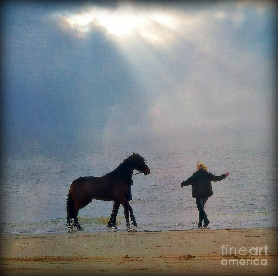 Horse Photograph - We Go Together Like A Horse And Carriage by Lisa Van der Plas