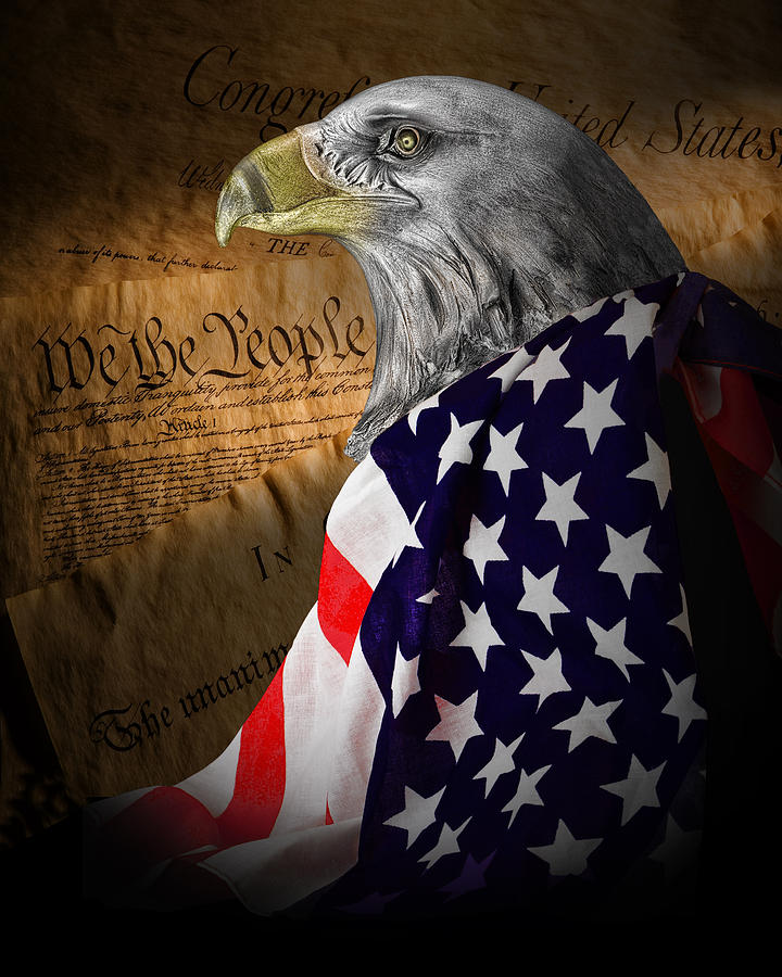 Eagle Photograph - We The People by Tom Mc Nemar