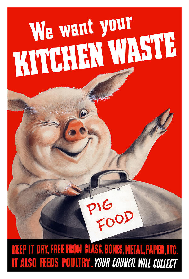 We Want Your Kitchen Waste Pig  Painting  - We Want Your Kitchen Waste Pig  Fine Art Print