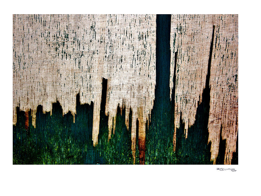 Weathered Abstract 5 Photograph