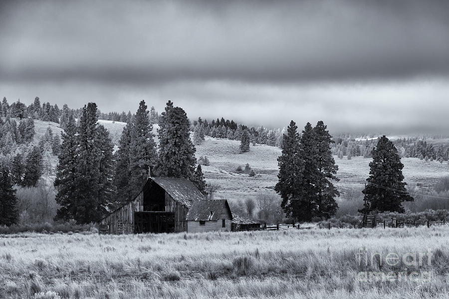 Barn Photograph - Weathered Beneath The Storm by Mike  Dawson