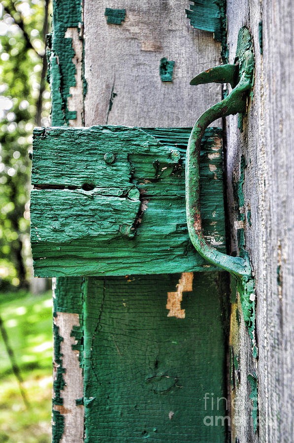 Weathered Green Paint Photograph
